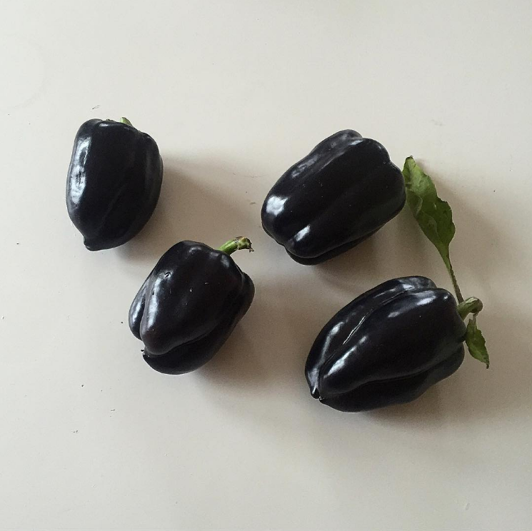 Food Noir