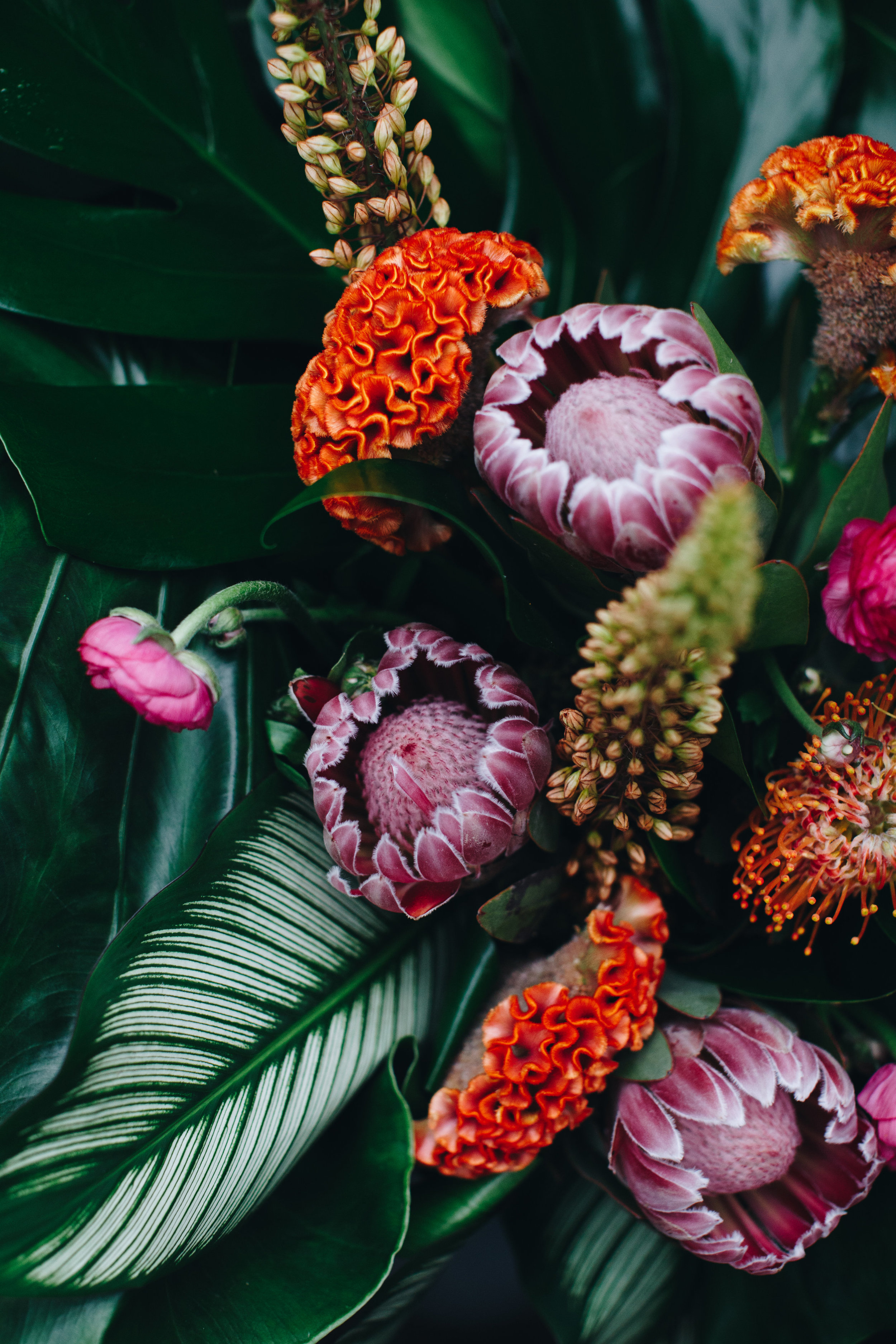Plantshed-Plantshed Bouquets-0017.jpg