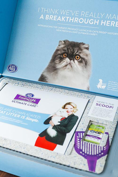CatsPrideBox.jpg