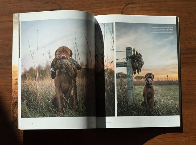 A couple of favorite spreads from @project_upland. Laying out this content makes for easy work.