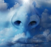 23181166-clean-air-environment-concept-with-a-close-up-of-a-human-nose-with-a-natural-blue-sky-and-clouds-tex.jpg