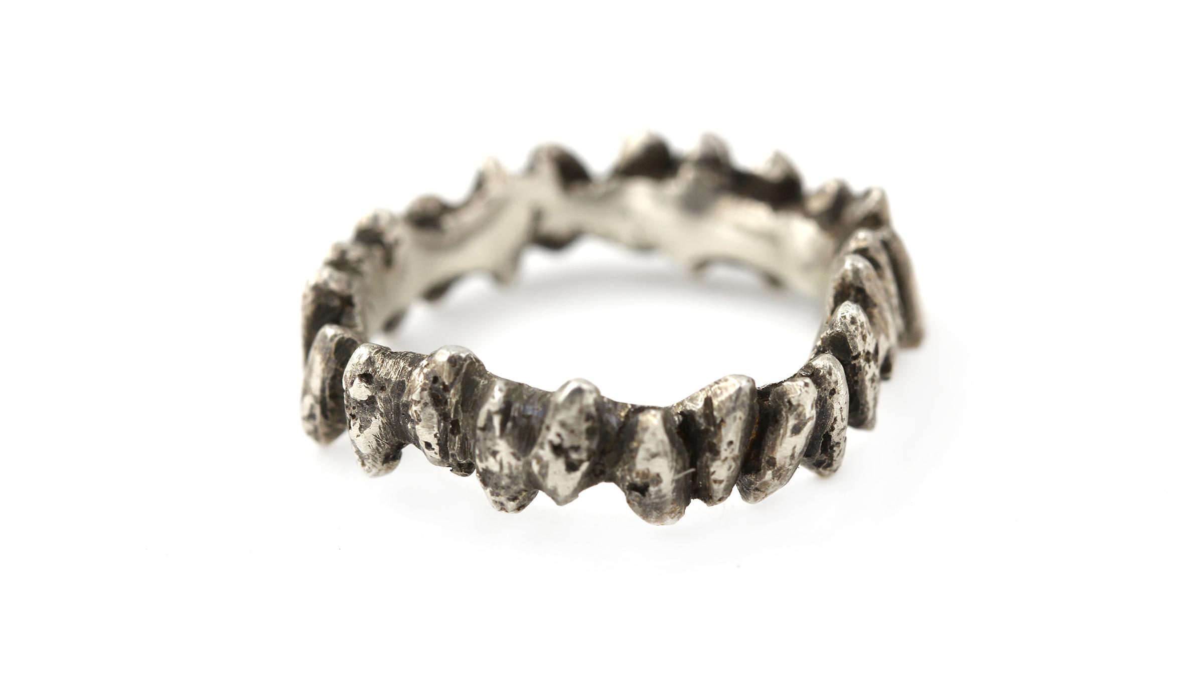 rice_teeth_ring_around_silver.jpg