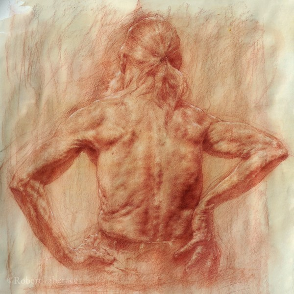 Spreading Wings, 32x42 in., red chalk on paper