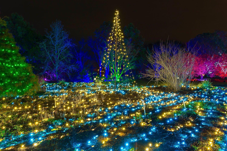 Lewis Ginter Botanical Garden Dominion Energy Gardenfest Of Lights M Barkley Photography