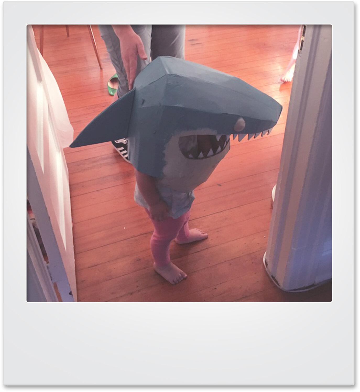 polaroid_shark_mikaylabutchart.jpg