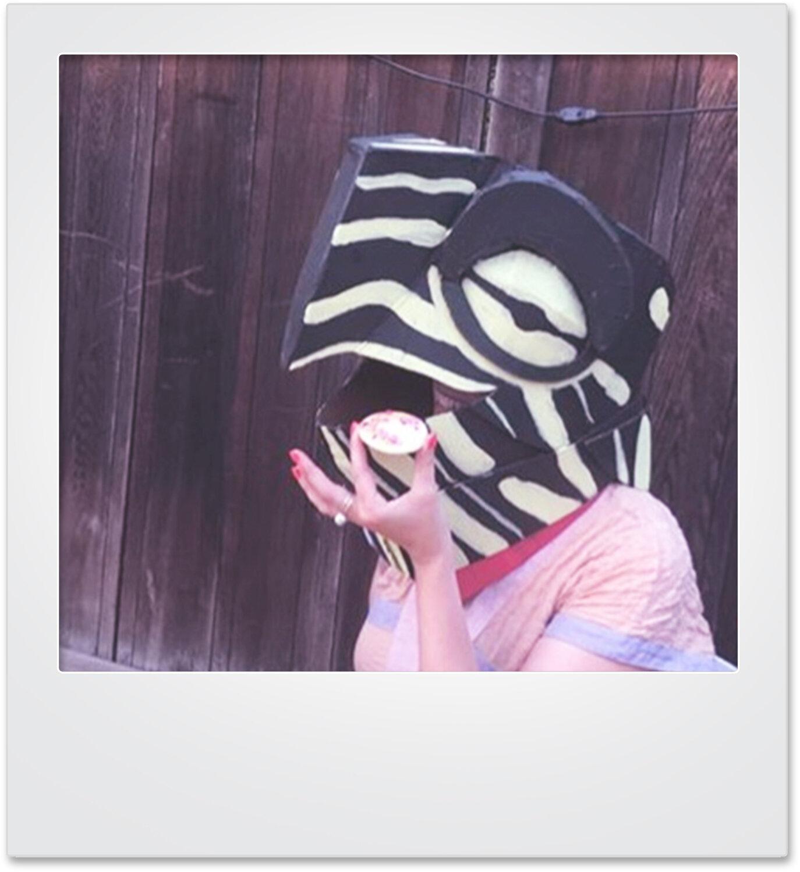 polaroid_turtle_mikaylabutchart.jpg