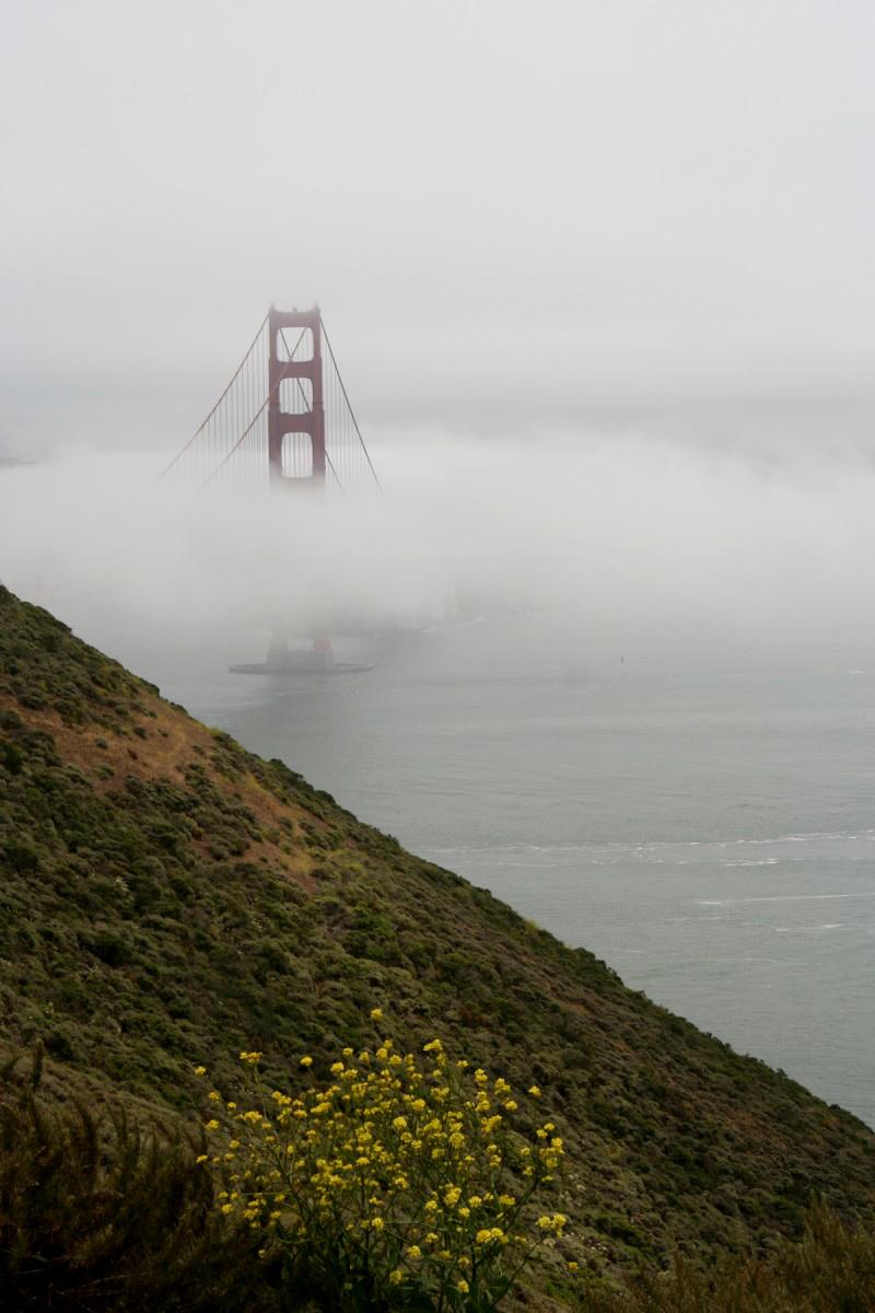 Tony Brunswick - Golden Gate Bridge
