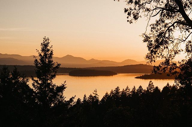 The beauty of Galiano is unmatched. It's close enough to civilization, but felt like our own private island. We can't wait to go back!