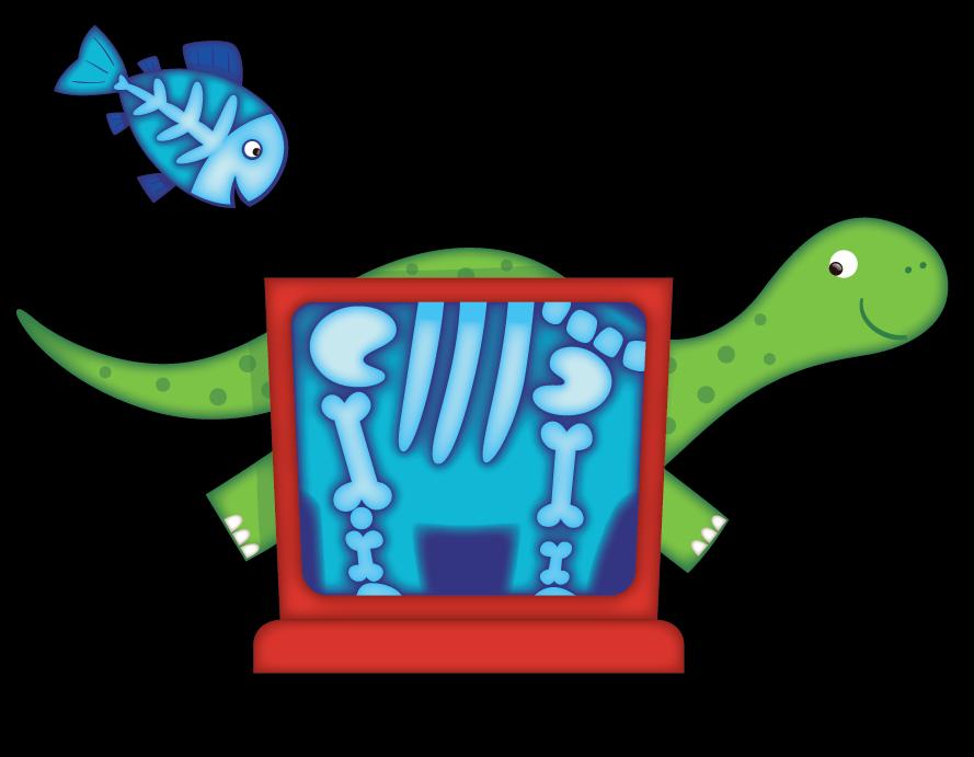 Dinosaur Xray Illustration
