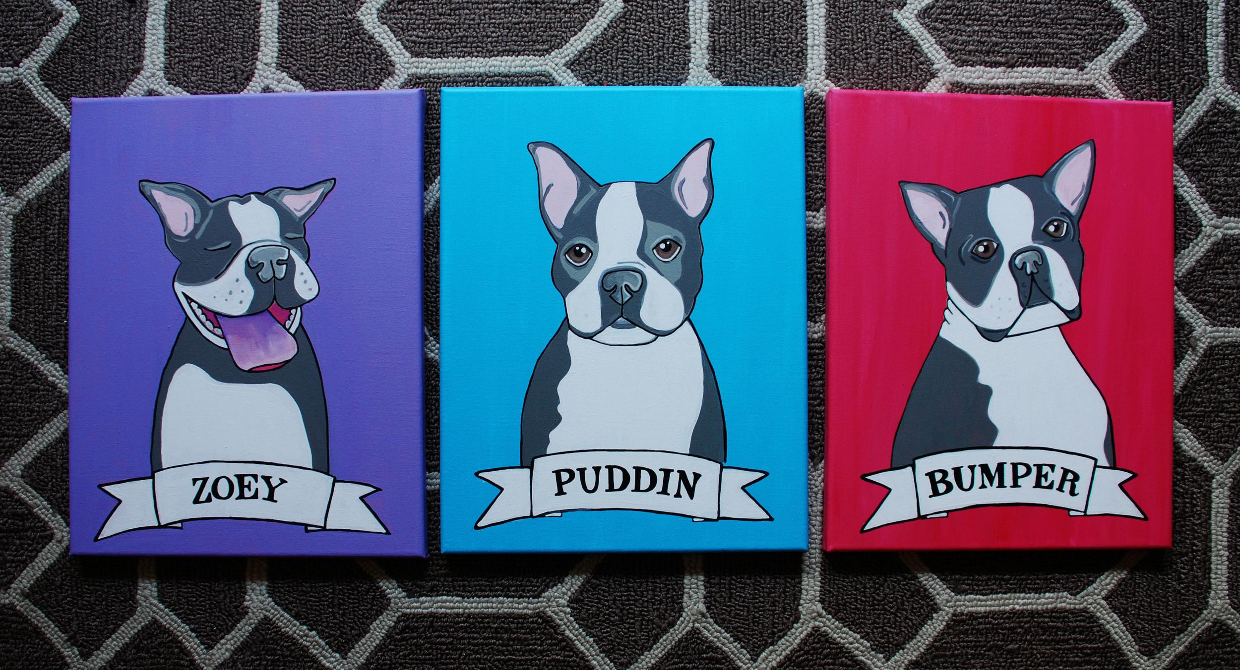 Boston Terriers.jpg