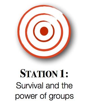 Station1graphic.jpg