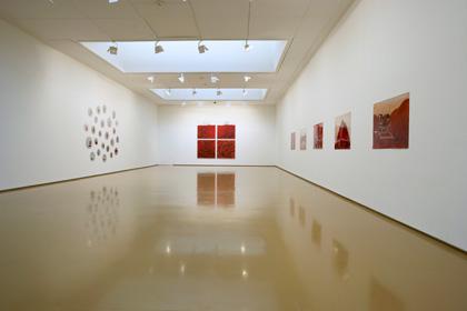 MUSEO DE ARTES VISUALES/ La Dulce e Irremediable locura de la fatalidad/ 2008