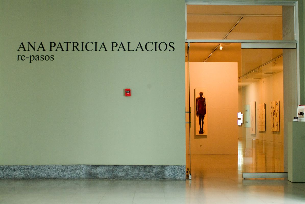 AnaPalacios-Dualidad-1.JPG