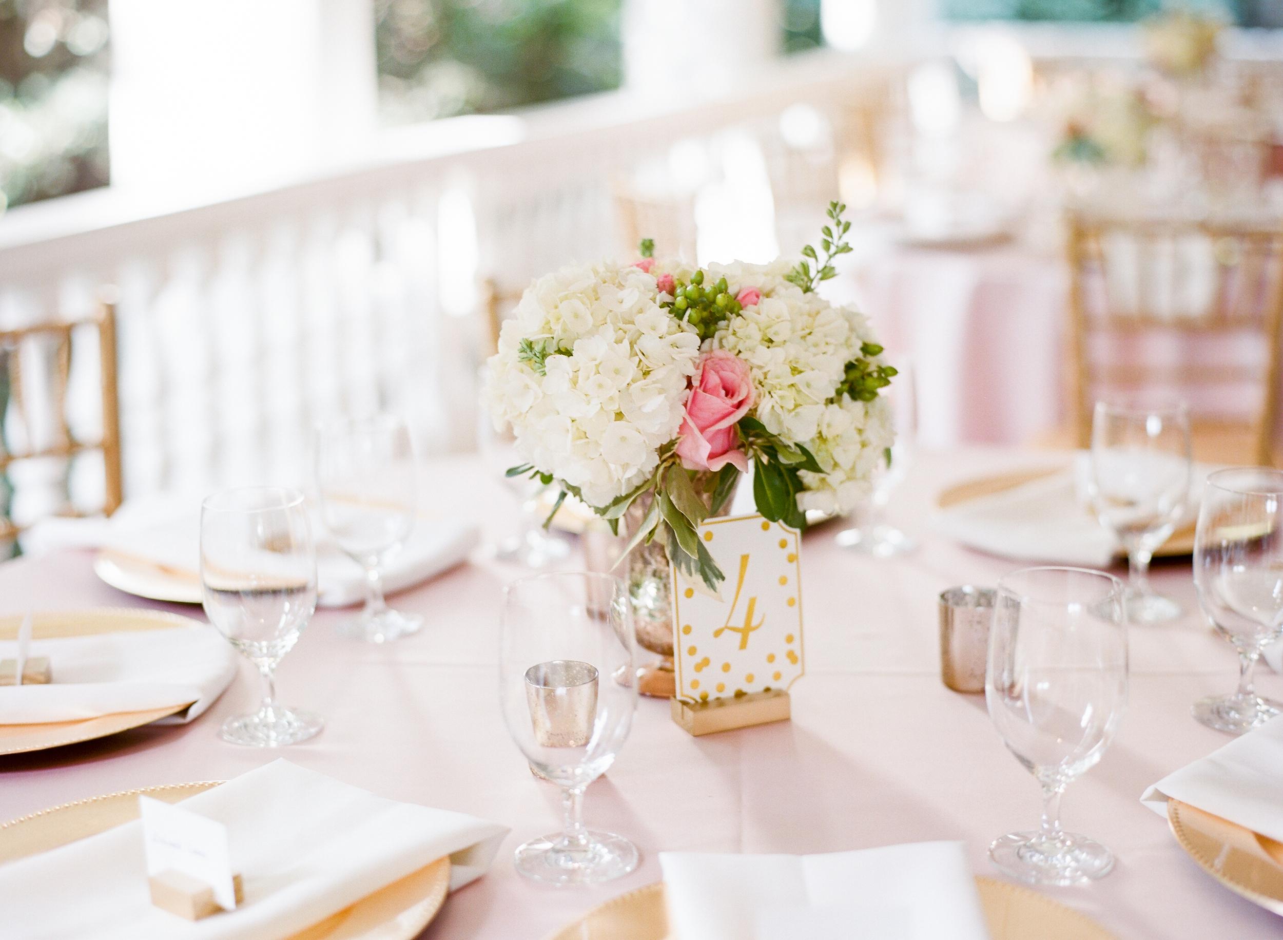 lauren jonas magnolia plantation wedding charleston film wedding photographer