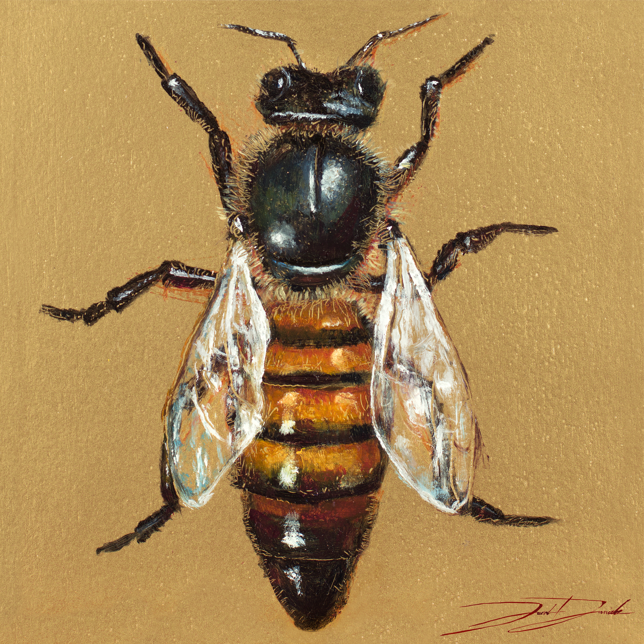 """Queen Bee""  6""x6"" oil on panel SOLD"