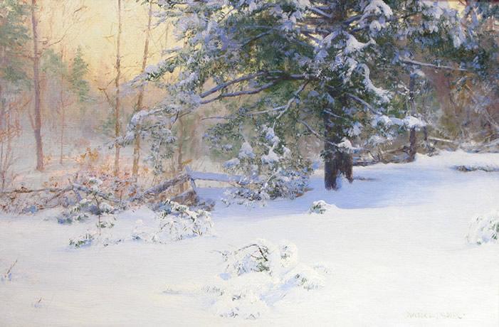 palmer_first_snow.jpg