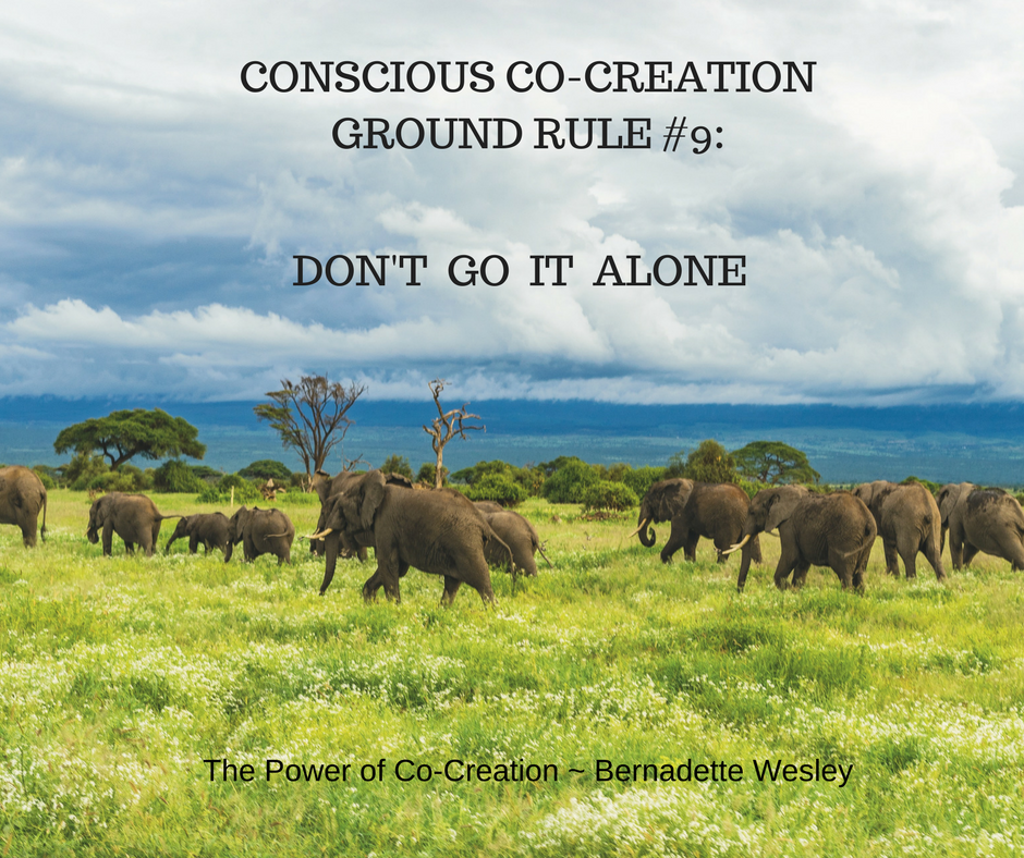 CONSCIOUS CO-CREATIONGROUND RULE #9_.png