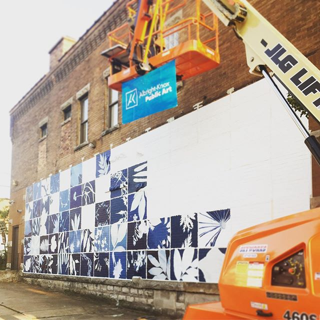 Mural progress! What an amazing feeling...incredible job by @jonesej2 and @_here.not.here from @albrightknox #feelingsograteful #mural #publicart #botanical #blueprint #buffalo also thanks to @_here.not.here for the photos!