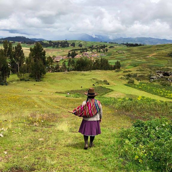Molly was foraging this morning for dye plants 🌈✨ (at Chinchero, Cusco, Peru)
