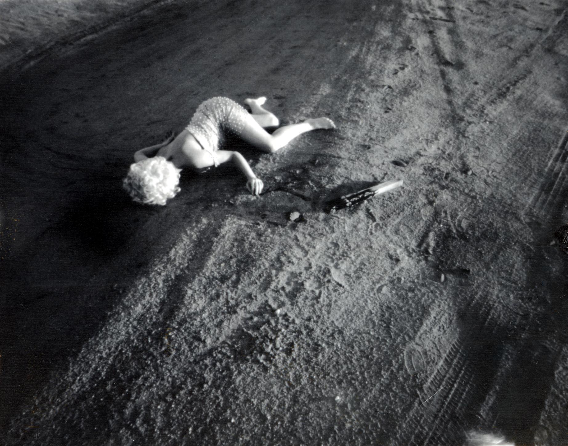 Crime Scene: Desert Rose by Virginia Conesa-O'Gara