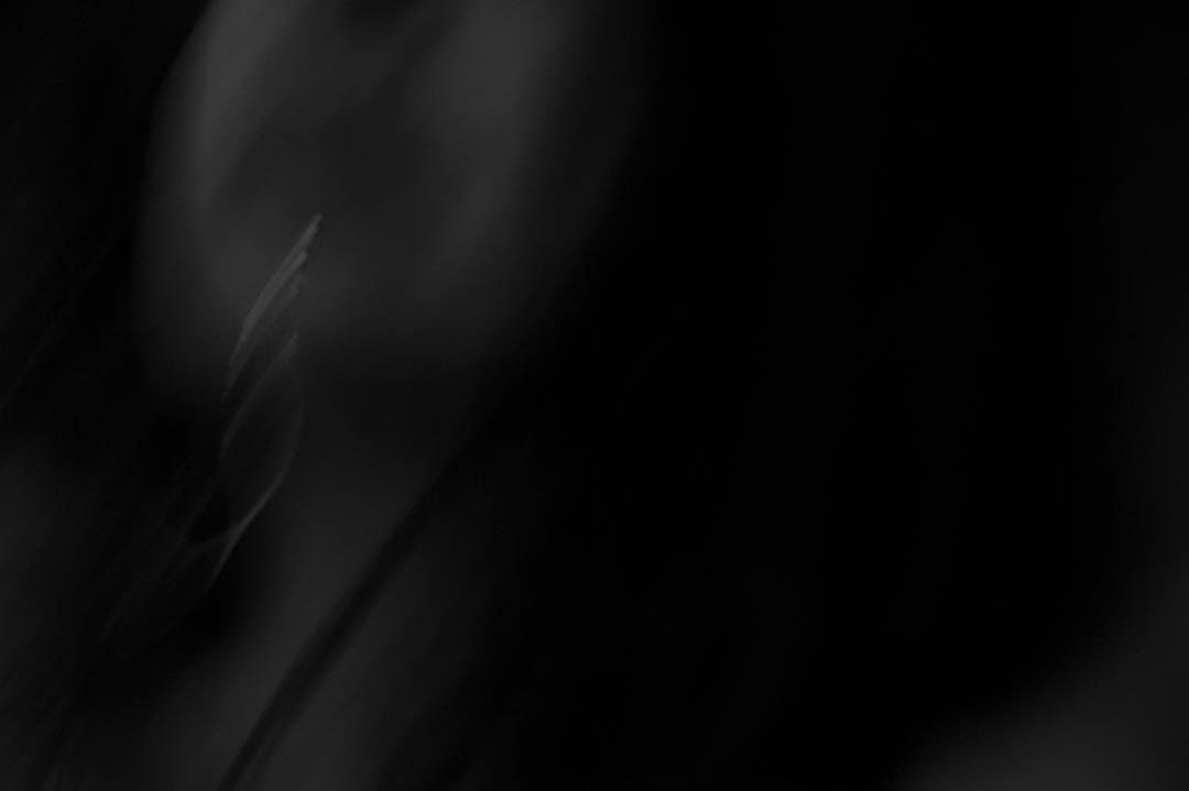 MomsDescent-07.jpg