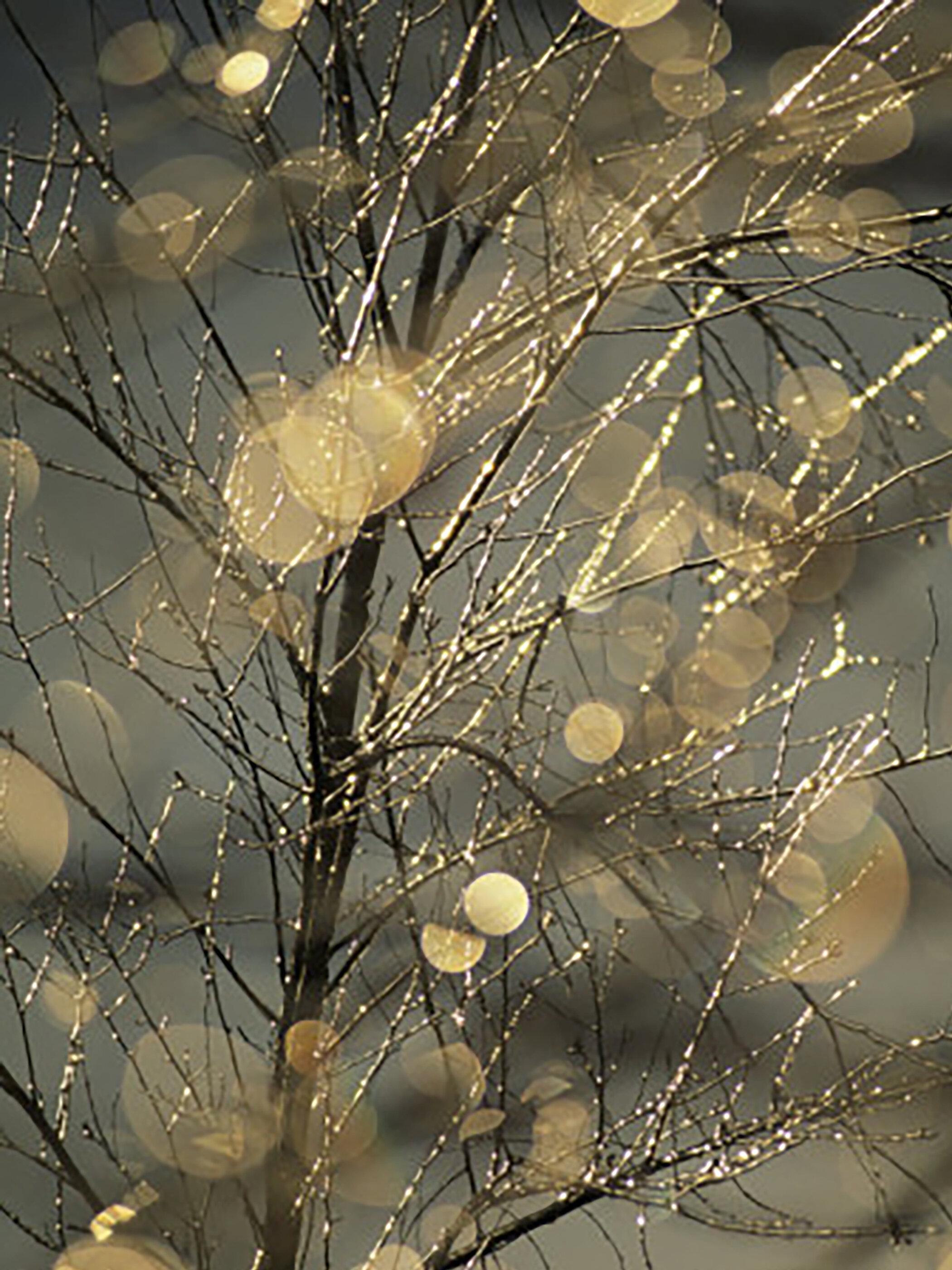 By photographer Raymond Gehman.