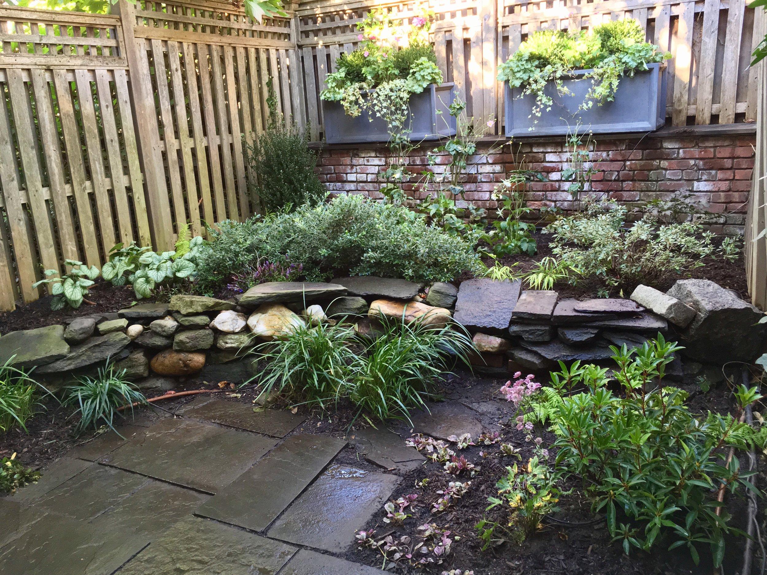Cobble Hill Garden Redesign