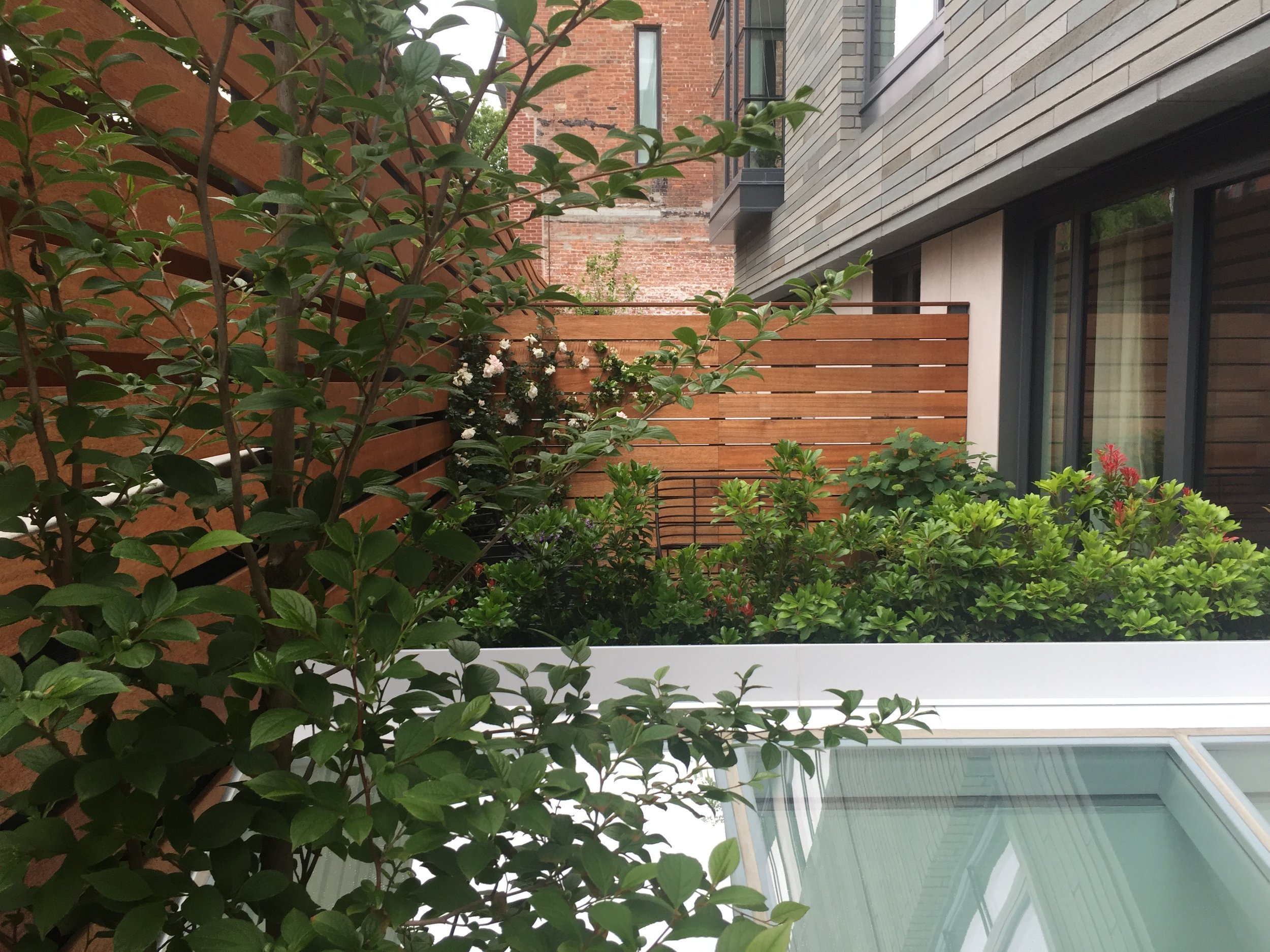 Gowanus Terraces