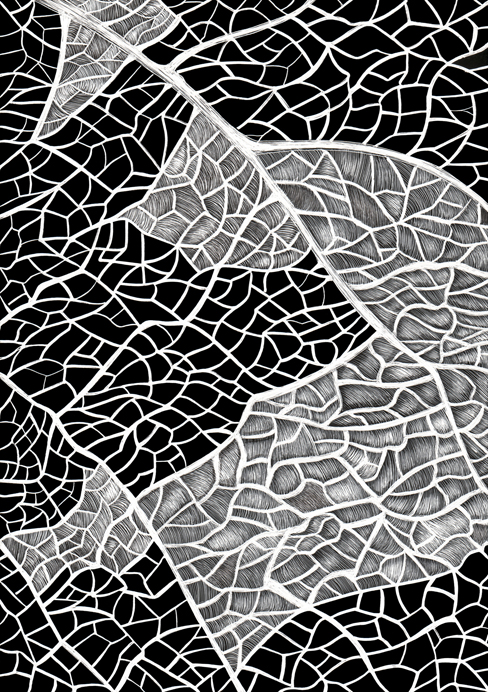 Detail of a Grape Leaf