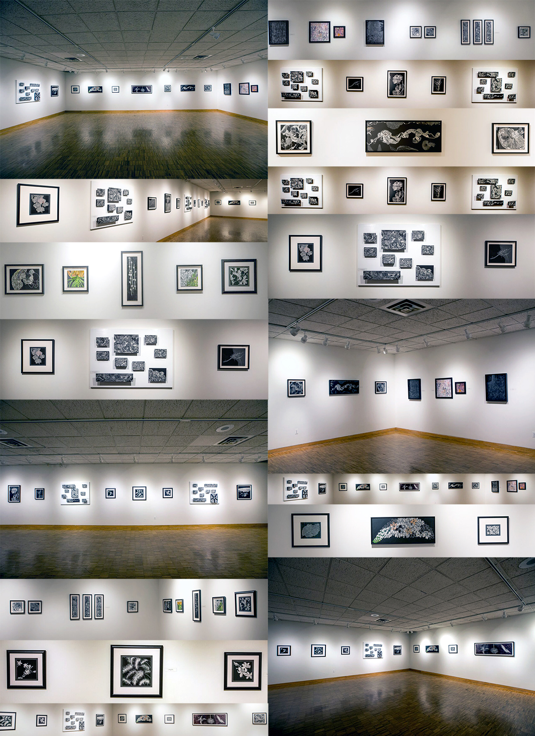Compilation of Photographs by Shirley Nannini of Storylines Exhibition by Lisa Goesling