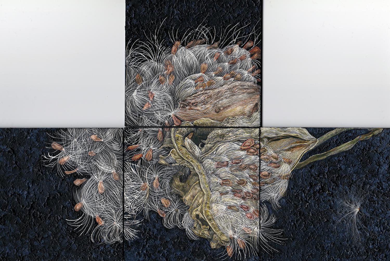 Milkweed Pod by Lisa Goesling
