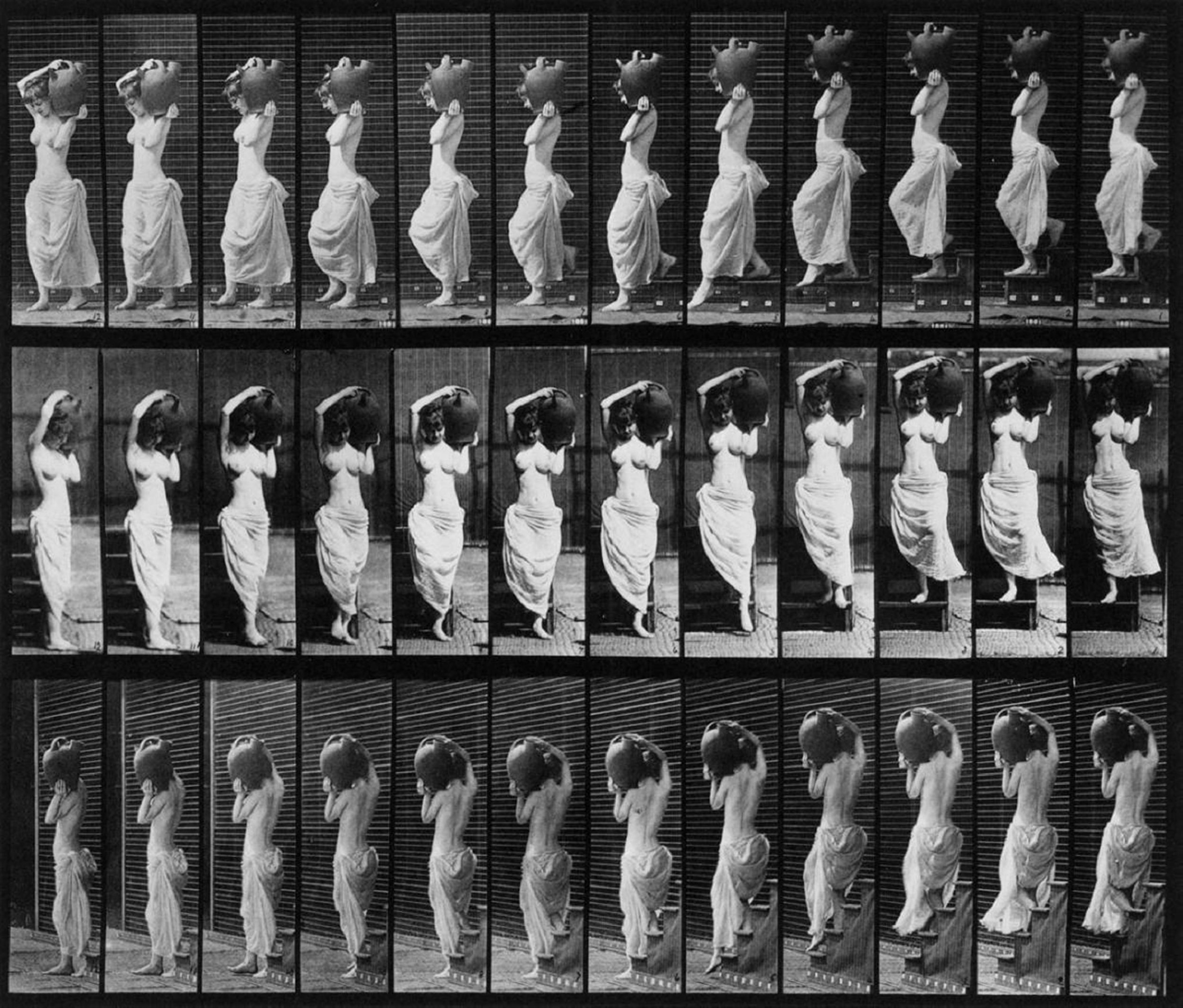Muybridge Movement Study