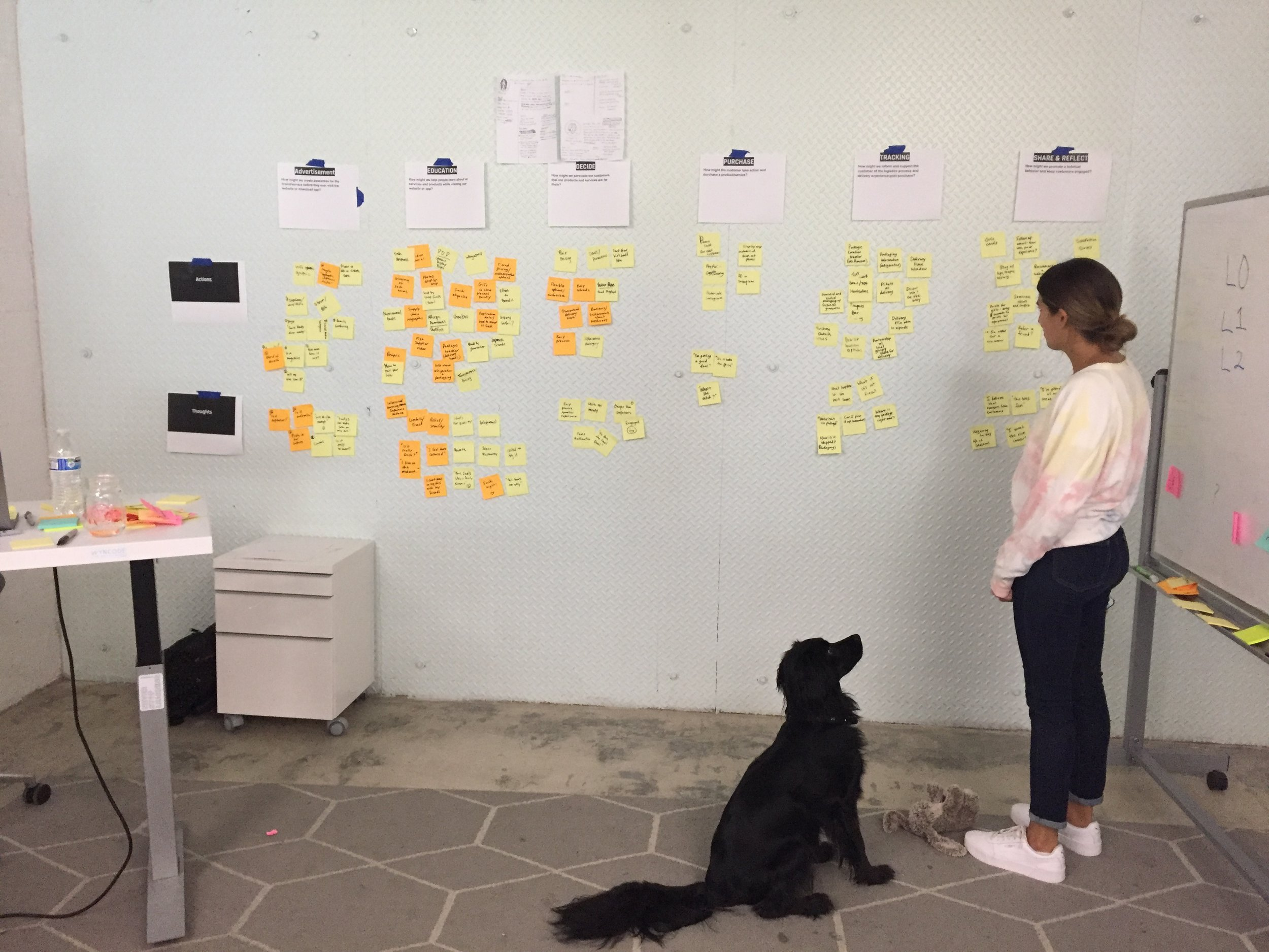 User Journey - We conducted a user journey as a team to determine the process to take our users through the product, taking into account the needs and pain points of our personas.