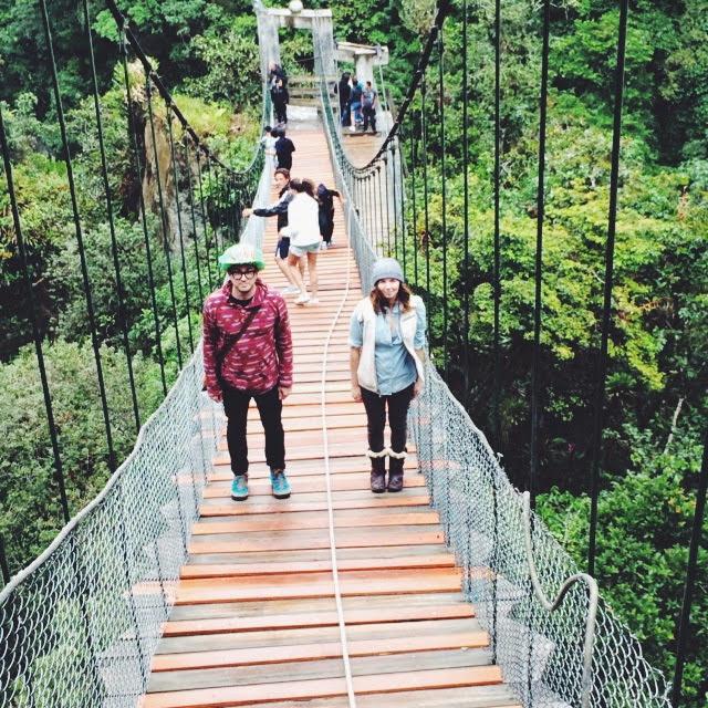 Amazon jungle Ecuador.jpg