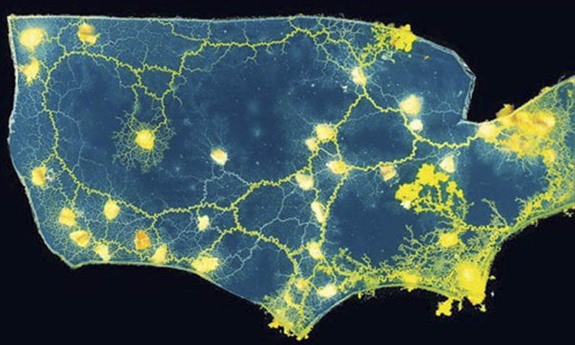 Slime-mould-maps-the-US-r-014.jpg