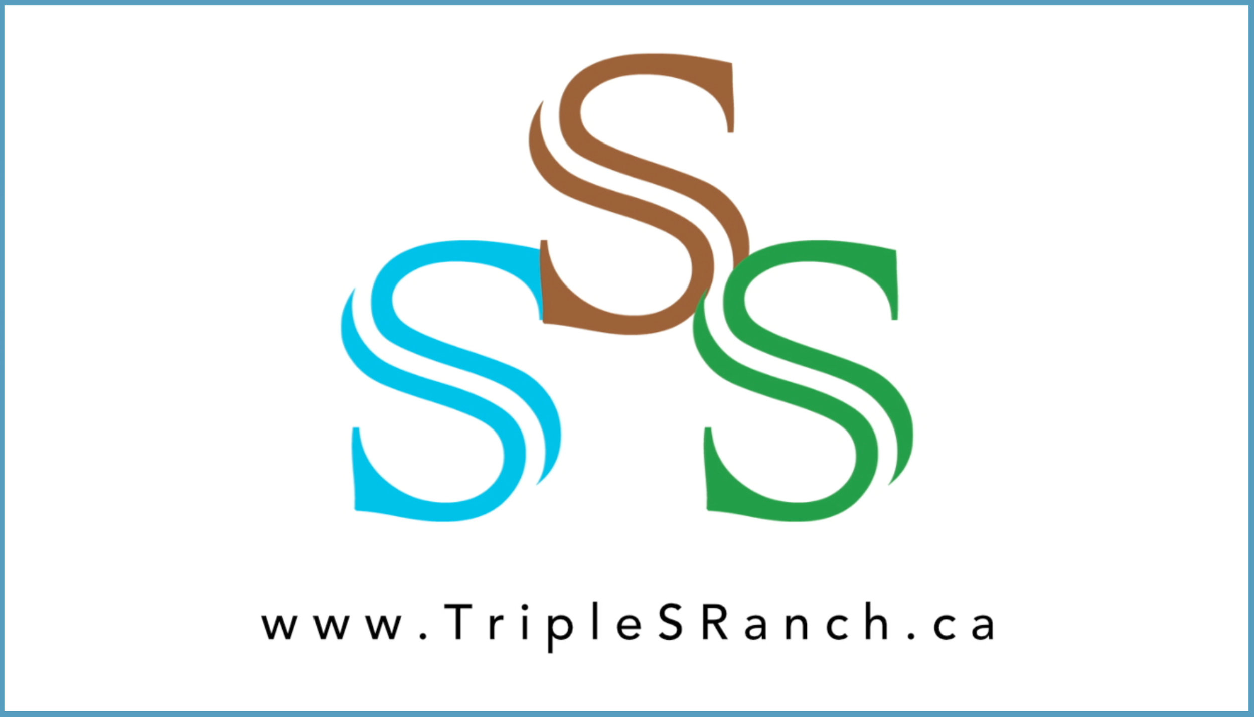Triple S Ranch button.jpg