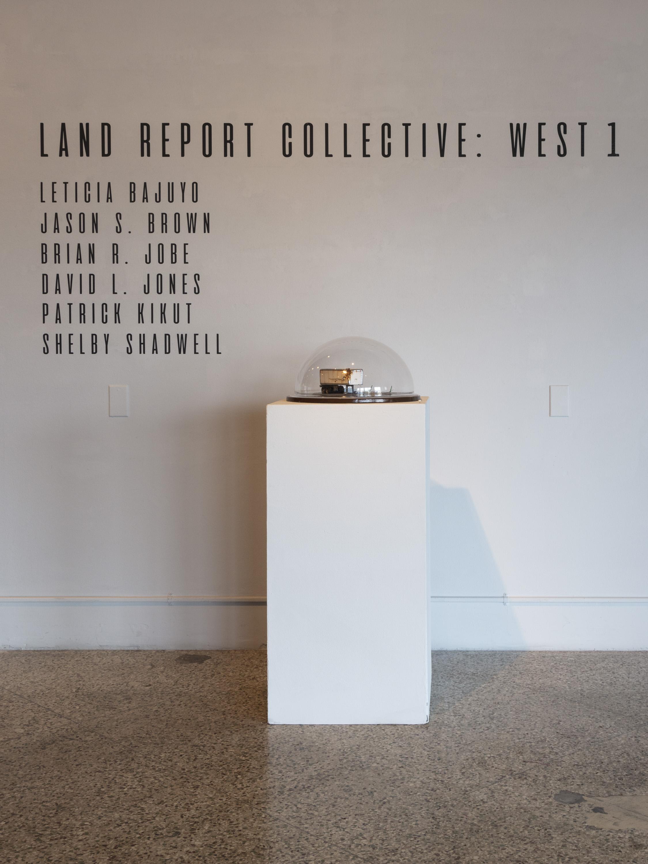 Land Report Installation_001.jpg