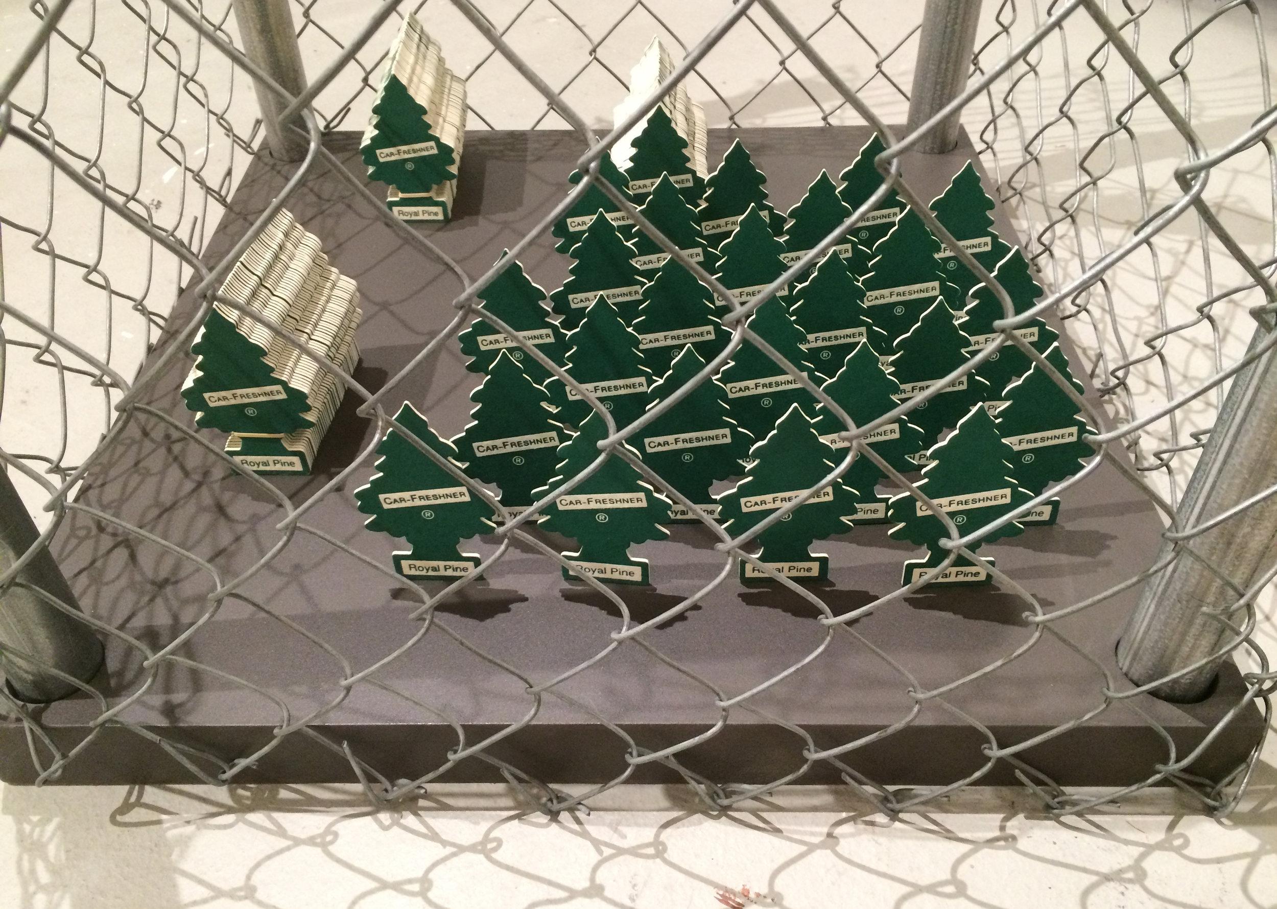 Bajuyo Yard Cubes 02.jpg