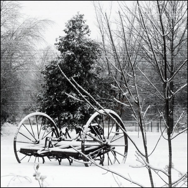 winter wagon8.jpg