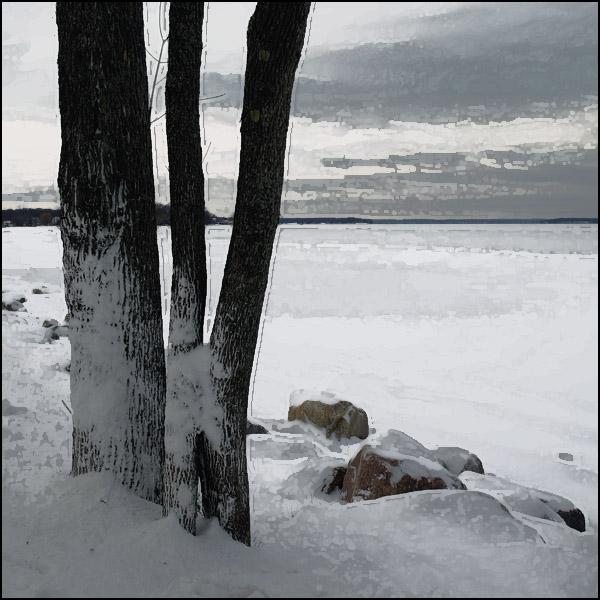 willow winter (45).jpg