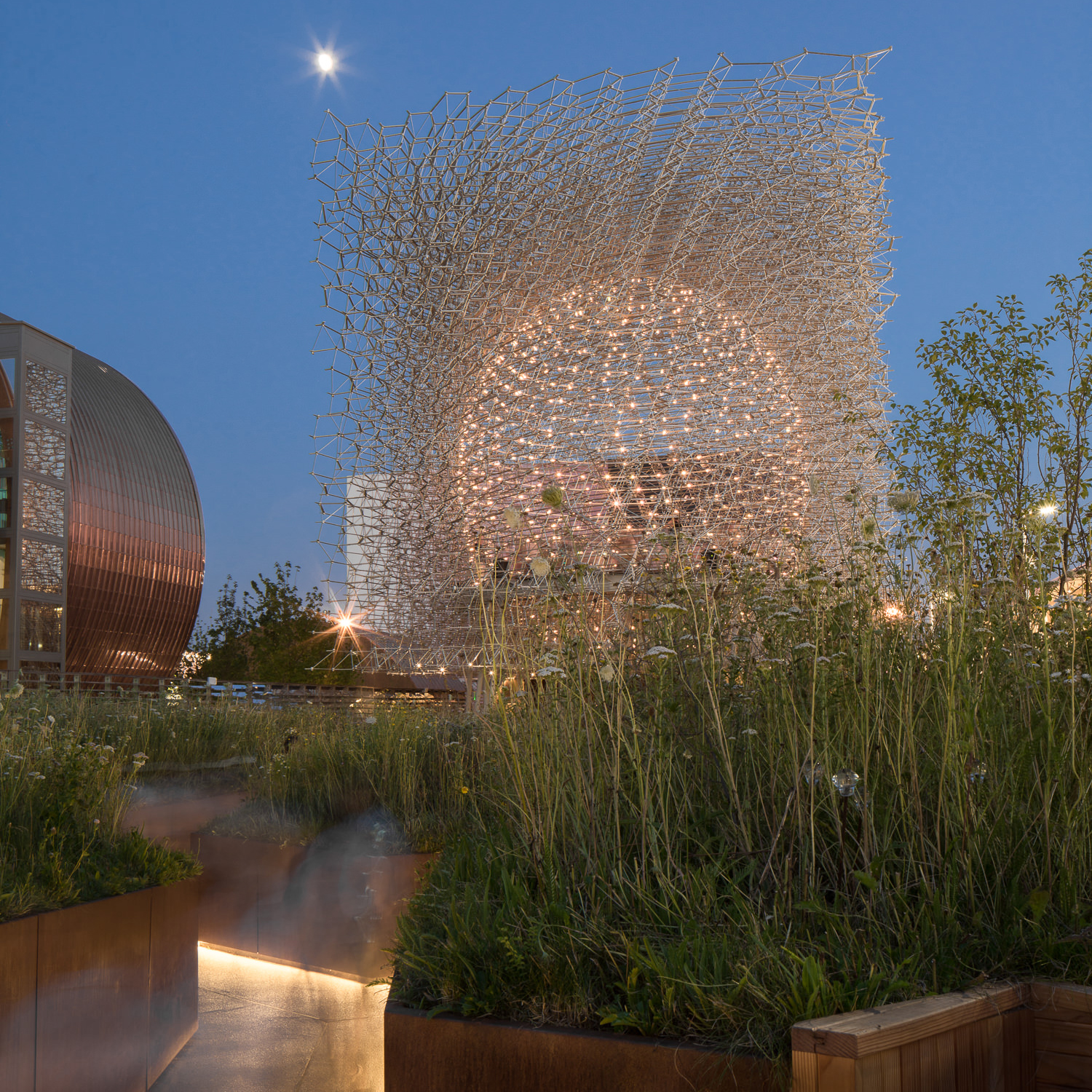 through the meadow at night at uk pavilion, milan expo, mark hadden