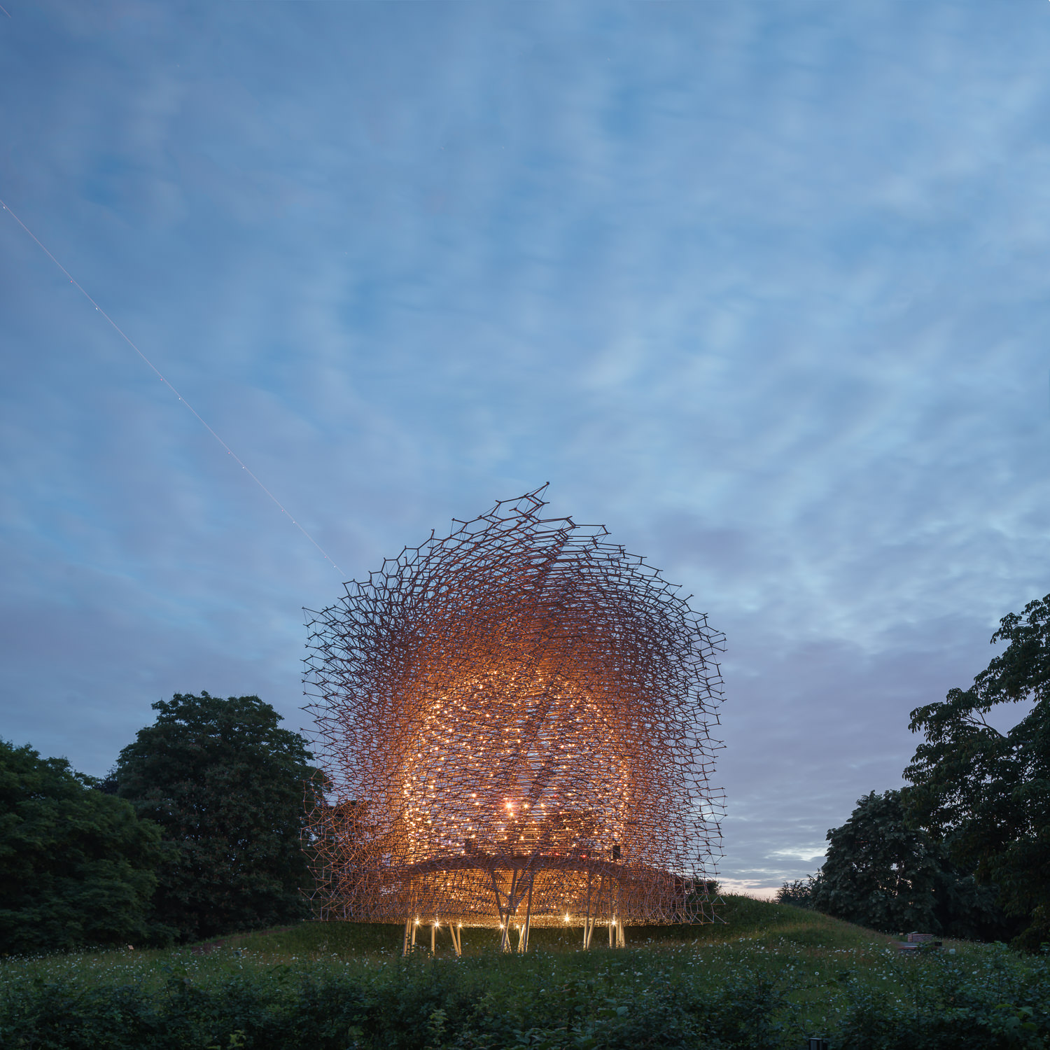 The Hive at Night, Kew Gardens, Wolfgang Buttress. Mark Hadden Architecture Photographer