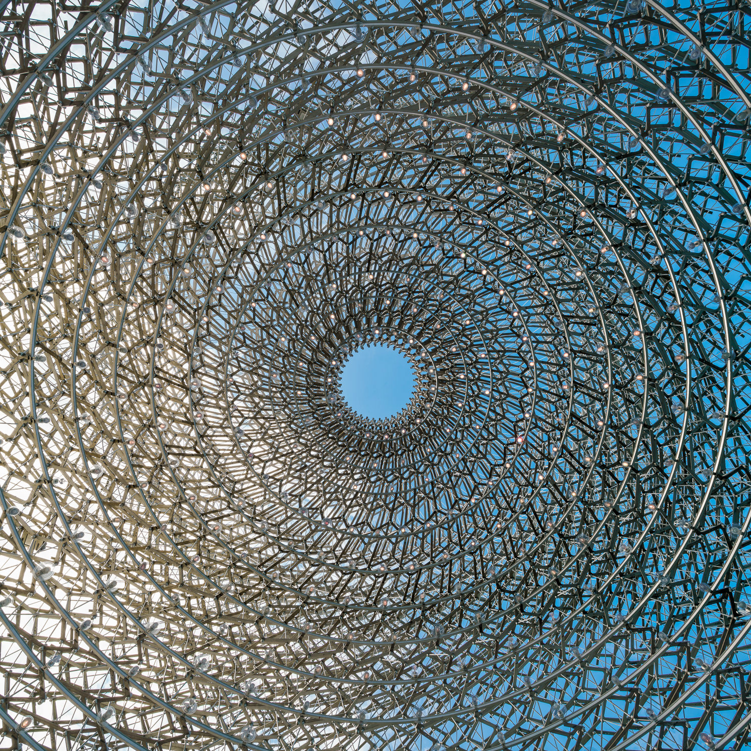 Structure at The Hive, Kew Gardens. Mark Hadden Architecture Photographer