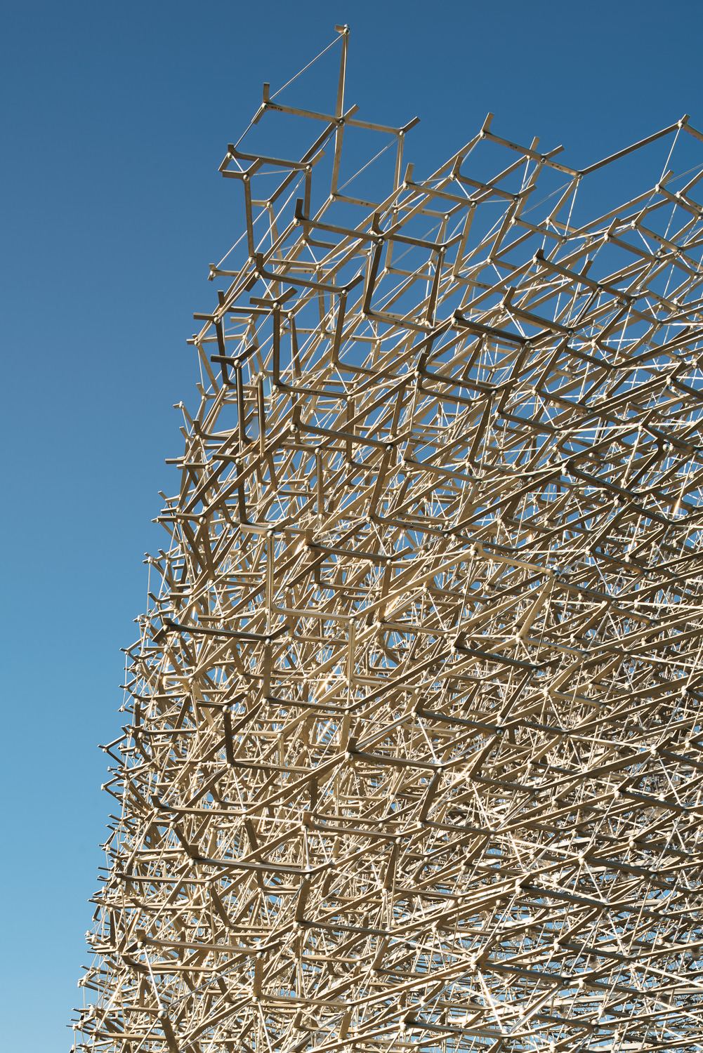 Detail of The Hive, Kew Gardens. Mark Hadden Architecture Photographer