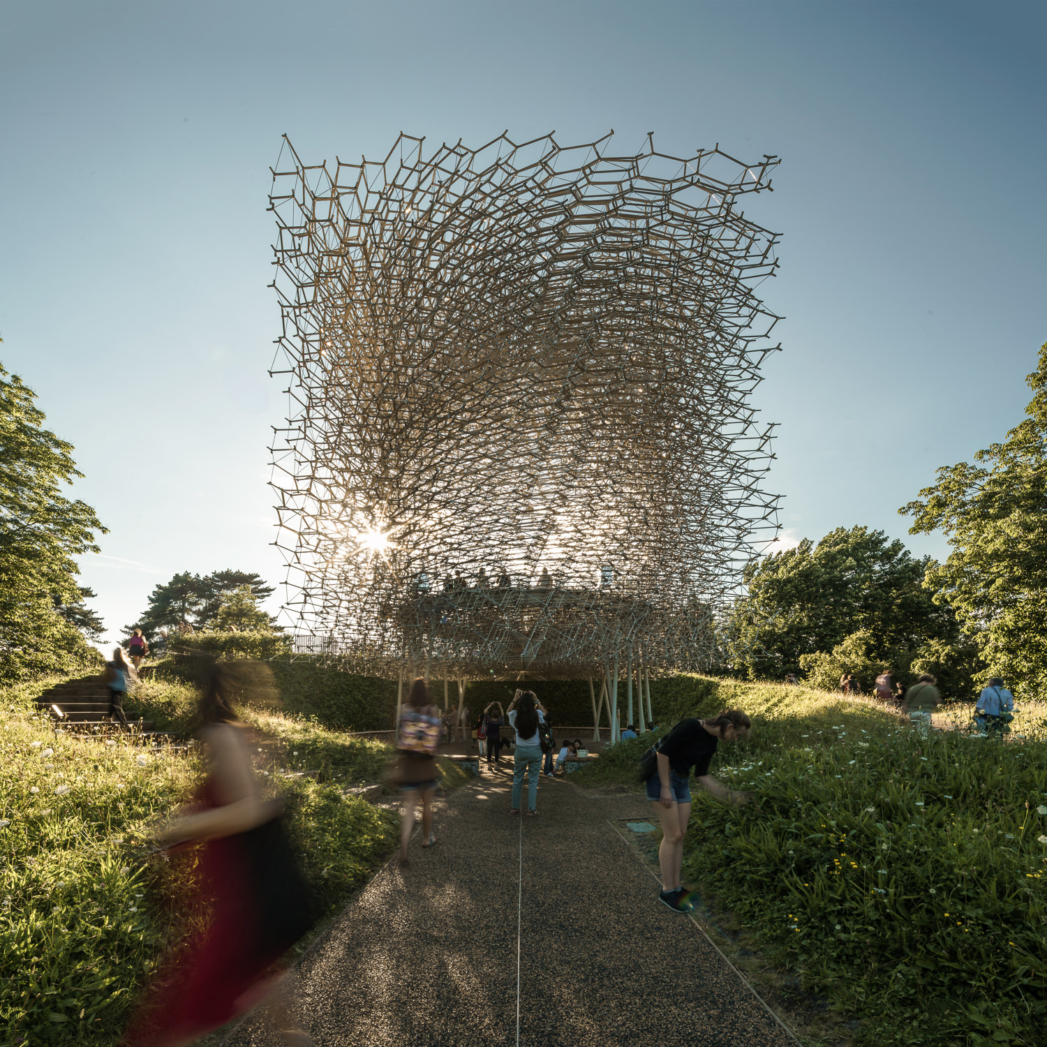 Late Afternoon at The Hive, Kew Gardens. Mark Hadden Architecture Photographer