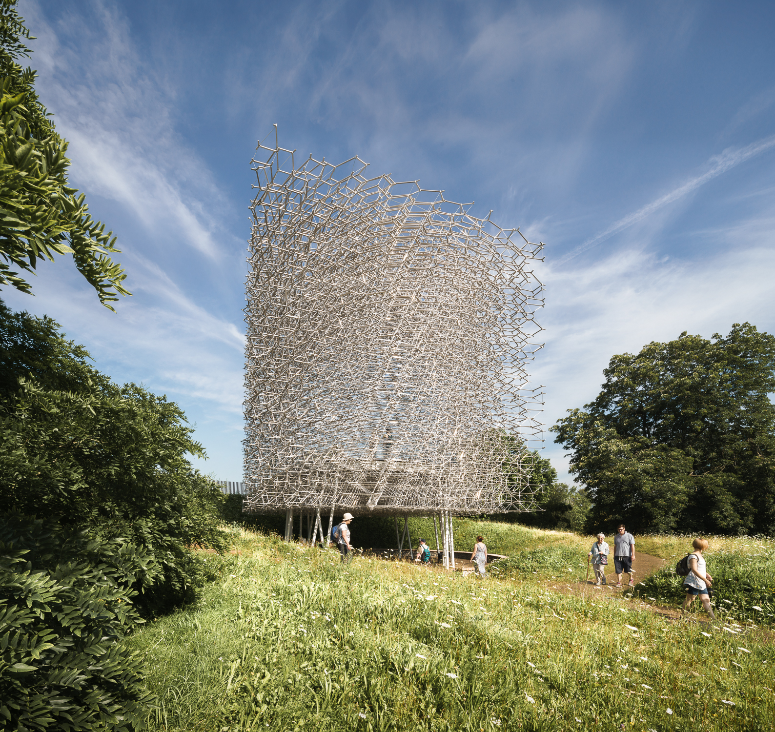 Through the meadow at  The Hive, Kew Gardens. Mark Hadden Architecture Photographer
