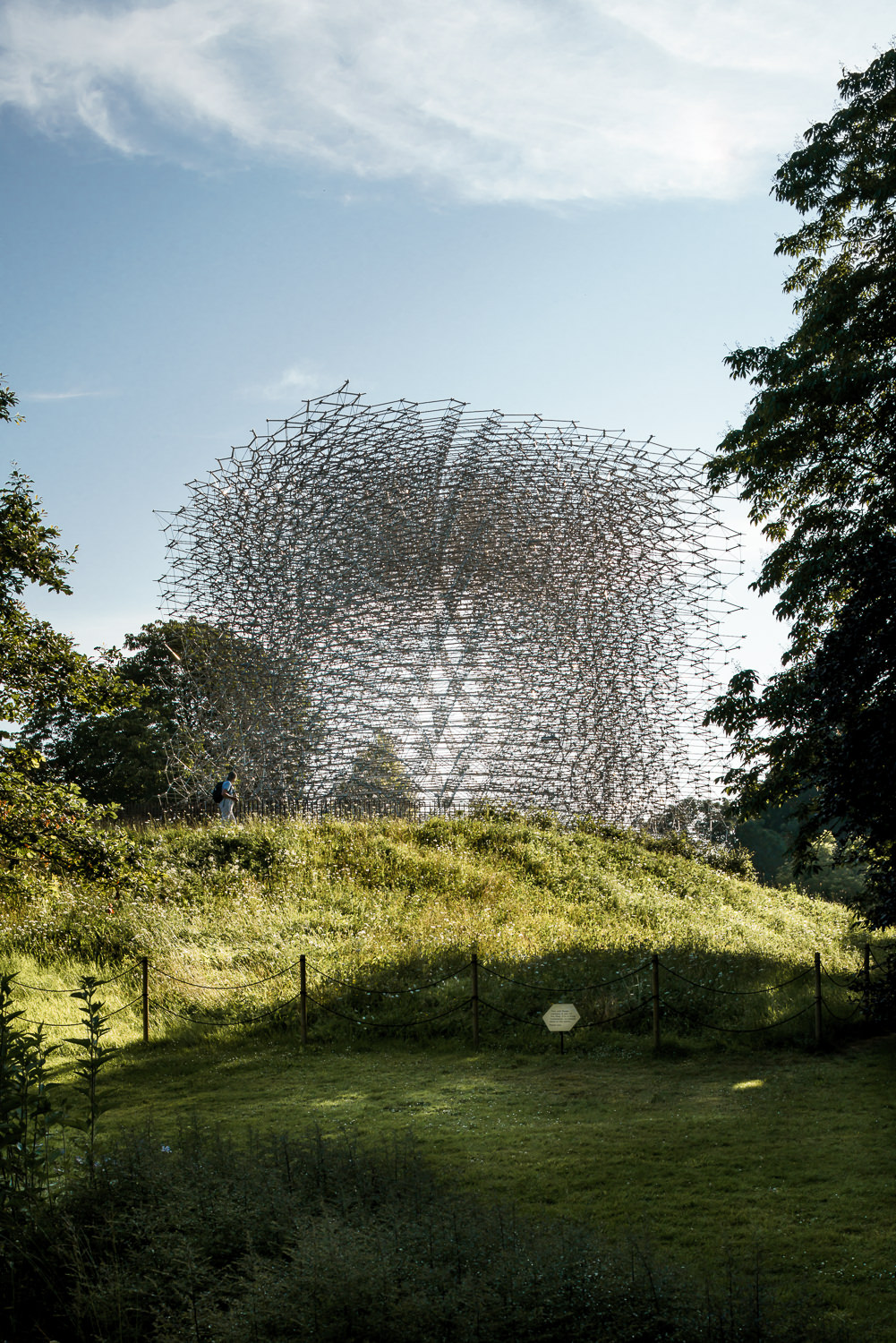 Morning at  The Hive, Kew Gardens. Mark Hadden Architecture Photographer