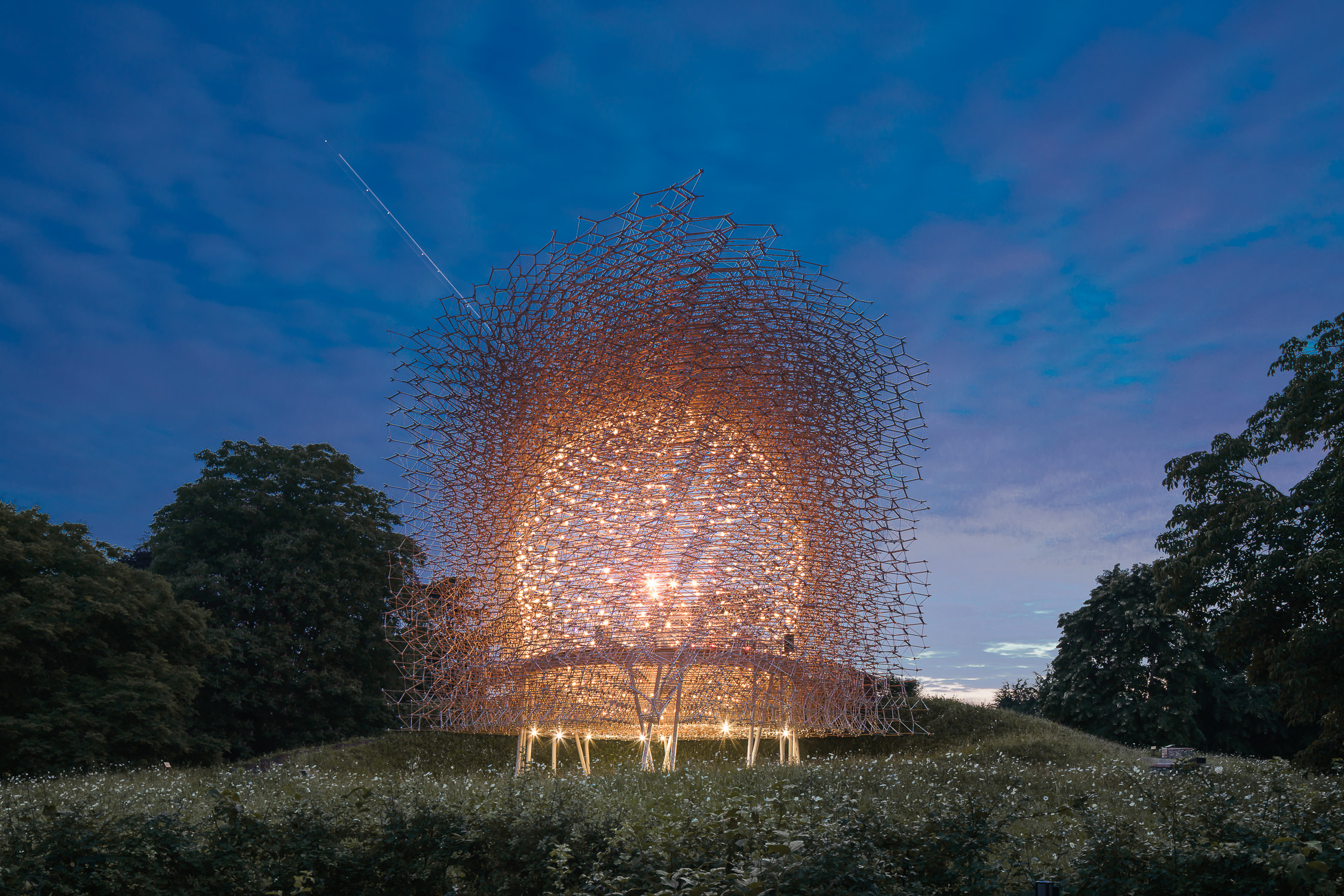 Hive at Kew Architecture Photography London
