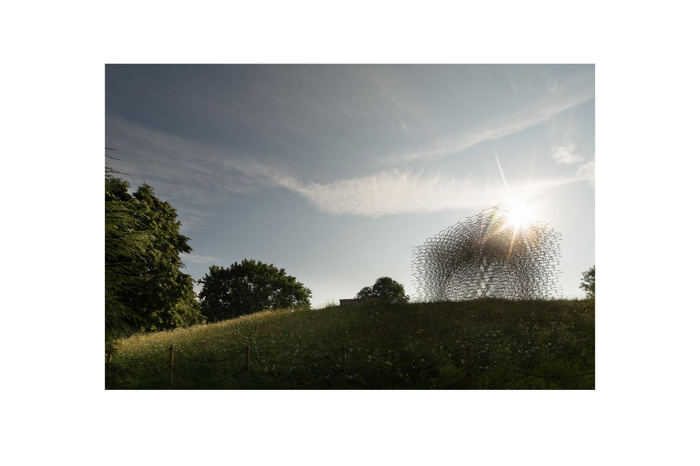 Wolfgang Buttress Hive Kew-349.jpg