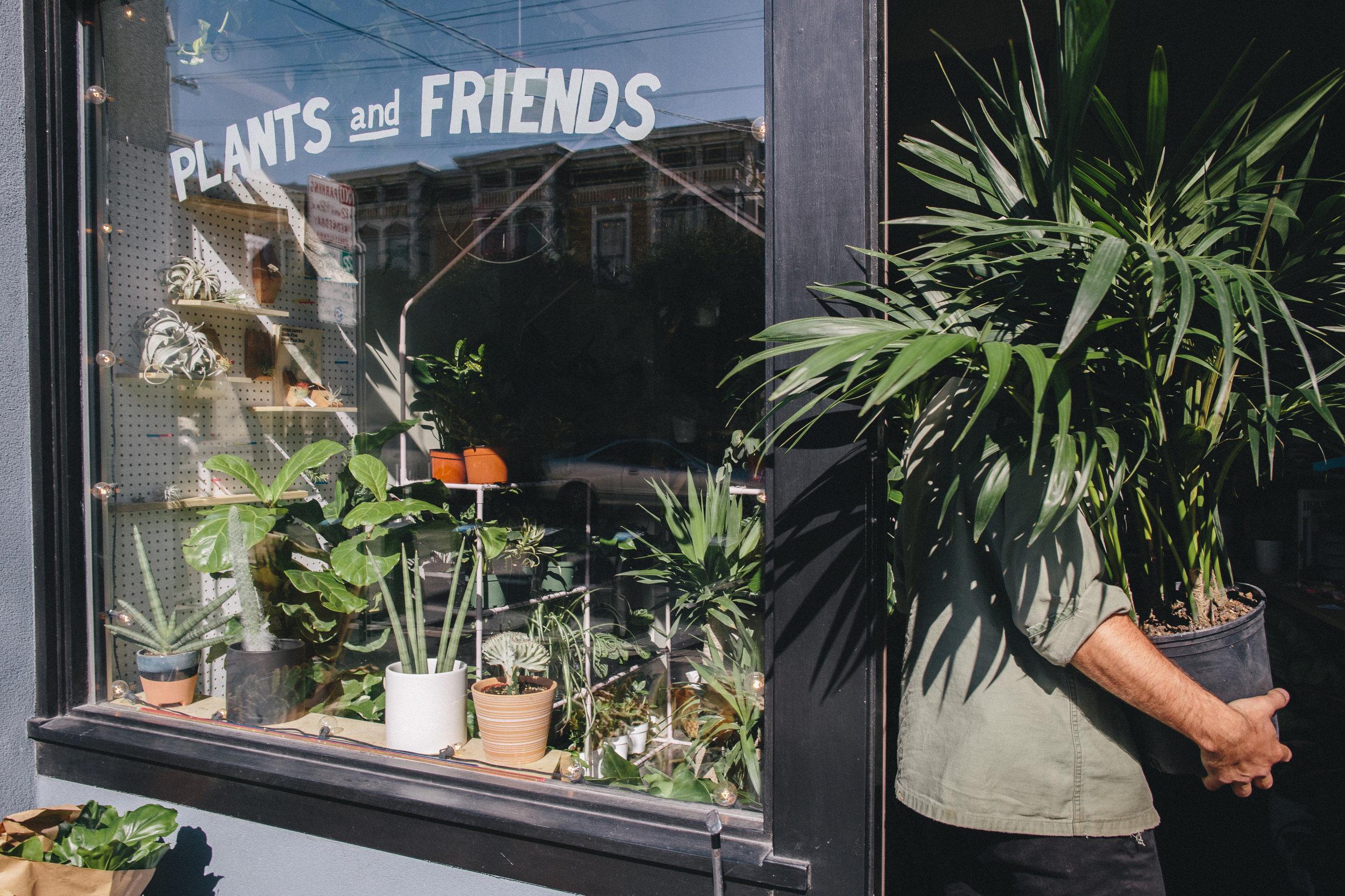 PlantsandFriends2018-72.JPG